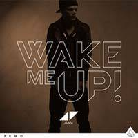 Avicii / Wake Me Up
